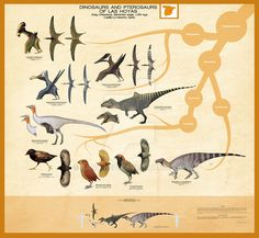 Dinosaurs and Pterosaurs of Las Hoyas by Kana-hebi.deviantart.com on @DeviantArt