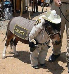 Awh Sheriff Pony(: