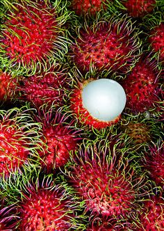 Healthy Lifestyles: Weird, wacky and unusual fruits and vegetables
