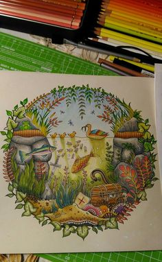 The Duck Pond In Enchanted Forest Colouring Book Media Used Polychromos Enchantedforest