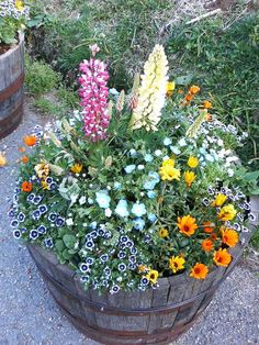 Barrel of flowers.of flowers.Barrel of flowers. Container Flowers, Flower Planters, Container Plants, Container Gardening, Flower Pots, Lawn And Garden, Garden Pots, Whiskey Barrel Planter, Barrel Flowers
