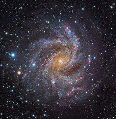 Лицом к NGC 6946 / Интересный космос