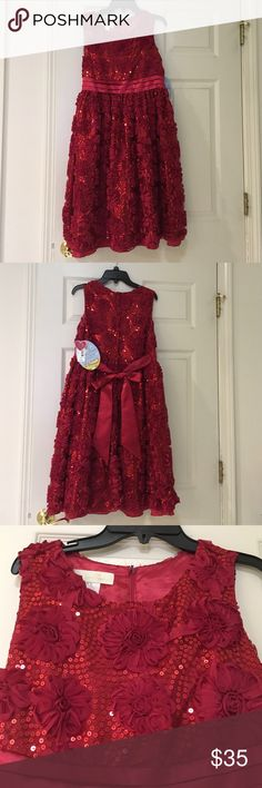 GLITTER HOLIDAY DRESS FOR GIRLS size 18.5 (Plus) Very nice for Christmas. Never worn. Size is for plus size girls (18.5).  Has ribbon flowers and glitter all over. Dresses Formal