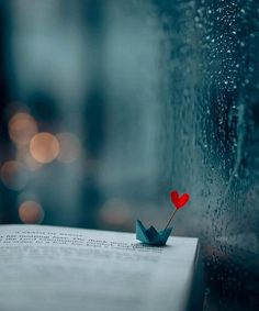 30 Romantic Valentine's Day Wallpaper Cool Pictures For Wallpaper, Cute Wallpaper Backgrounds, Love Wallpaper, Cute Wallpapers, Iphone Wallpaper, Miniature Photography, Cute Photography, Creative Photography, Photography Outfits