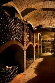 Great large brick wine cellar for aging wine.