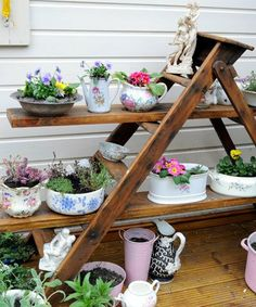 Ladder With Chinese Flower Pots