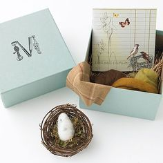 love this nest & nurture kit