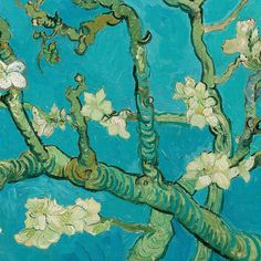 Almond Blossom (detail) by Vincent van Gogh   Lone Quixote   #VincentvanGogh #vangogh #PostImpressionism #art #painting #blossoms #arte #kunst #artwork #flowers #detail