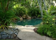 Make your patio a paradise with tropical landscape to create shade for your pool. Are you Making The Most Out Of Your Outdoor Living Space This Summer? Find out how on DigThisDesign.net