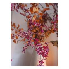 The style of Cassandra Ellis, an atmospheric decoration - Turbulences Déco Farrow Ball, Wabi Sabi, Alex Hotel, Turbulence Deco, Paros, Tiny House, Living Spaces, Glass Vase, Sweet Home