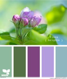 Color Palettes- bathroom color ideas