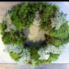 Craft day at the farm house! Moss wreaths!!!