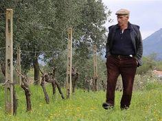 Long live #Sardini
