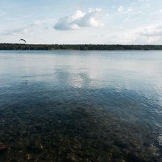 via Instagram nanny.licious: Müritz | Waren #germany #eastgermany #waren #müritz #lake #water #reflection #forest #bird #flyaway #nature #landscape #natureporn #nofilter #ig_deutschland #igershamburg #picoftheday #photooftheday #überwasser