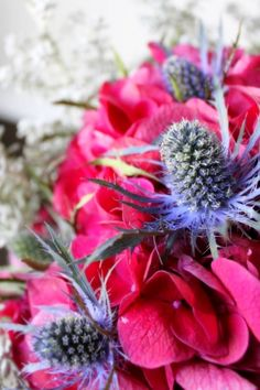 Deep pink hydrangea + blue thistle (aka sea holly) + kochia (Floral Cadet Designs) This is an interesting mix of colors but I like it. Principals Of Design, My Flower, Flower Ideas, Sea Holly, Floral Arrangements, Flower Arrangement, Thistles, Pink Hydrangea, Outdoor Life