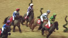Scroll down to click on video see these little ponies and riders race over fences....priceless!