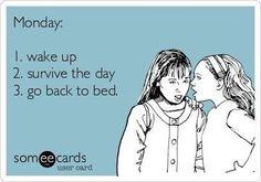 Monday summed up #work