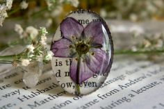 Stunning and Unique Bookish Gifts and Accessories for Nature Lovers