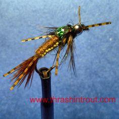 Woven Body Golden Stone Fly
