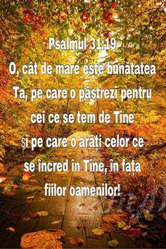 God Loves Me, Bible, Dios