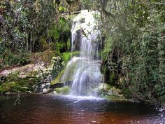 https://flic.kr/p/Mxf9mm | Cachoeira na Serra do Funil, Rio Preto, MG, Brasil