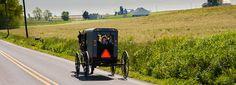 Descubra la simplicidad Amish en los recorridos en carruaje, las casas escuela, las tiendas de tejidos y la cocina del campo en el condado de Lancaster.