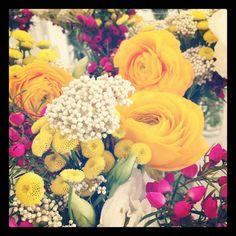 Spring yellow + accent raspberry