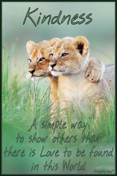 Kindness ~ A simple way to show others that there is Love to be found in this World ⊰♡⊱