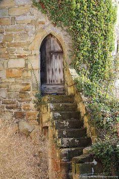 Castle, door, ivy, staircase,