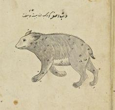 Manuscrits arabes. Série d'images indiennes, qui devaient servir à l'illustration du traité sur les constellations, par ?Abd al-Rahman al-Soufi Date d'édition : 1701-1800 Sujet : Peintures indiennes Type : manuscrit