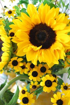 Sunflower and black-eyed susan in a mustard colored vase.