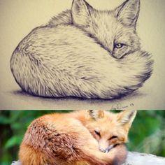 Dessin tattoo, cute fox drawing, cute drawings of love, bee drawing, drawin Love Drawings, Animal Drawings, Drawing Sketches, Art Drawings, Drawing Ideas, Sketching, Easy Sketches, Sketches Of Love, Drawing Animals