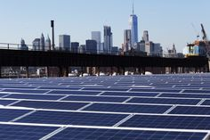 More than 30 states say they will press ahead with clean energy. New York governor unveils biggest investment in renewable energy by an America state.