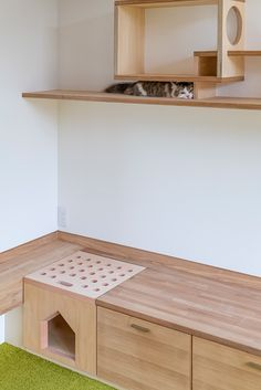 Animal Room, Cat Wall Furniture, Home Furniture, Cat Wall Shelves, Cat Gym, Cat Hotel, Cat House Diy, Cat Playground, Space Cat
