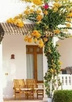 Colorful Apartment, Yellow Cottage, Simple Furniture, Types Of Doors, Screened In Porch, Entry Doors, Great Places, Beautiful Places, Houses