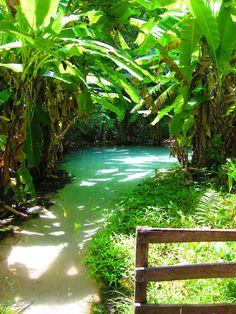 visitheworld:Fervedouro hot spring in Parque Jalapão, Tocantins / Brazil (viaexpedicaoandandoporai).