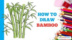 Easy Cartoon Drawings, Cartoon Drawing Tutorial, Easy Drawings, Bamboo Drawing, Nature Drawing, Flower Drawing Tutorials, Drawing Ideas, Craft Projects For Kids, Arts And Crafts Projects