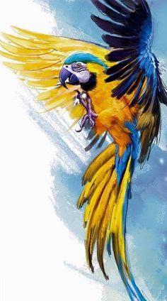 Newest Snap Shots parrot flying Thoughts Holding your own feathered close friend balanced suggests consistently managing their own health. Although animal chook Bird Drawings, Animal Drawings, Drawing Birds, Watercolor Bird, Watercolor Paintings, Parrot Painting, Bird Artwork, Wildlife Art, Animal Kingdom