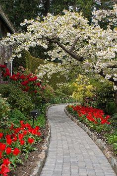 Butchart Gardens~ Victoria, British Columbia