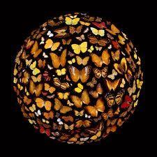 Butterfly Garden Globe ~ Ernst Haecker