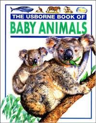 Image result for children's reference books ages 7 -11