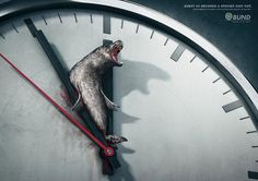 Every 60 Seconds a Species Dies Out. Each Minute Counts  ||  Agency: Scholz & Friends, Berlin, Germany
