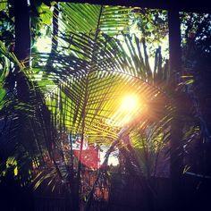 Nochmals Sonnenuntergang auf Koh Tao morgen früh geht's nach Koh Phangan #kohtao #sunset #charmchuree