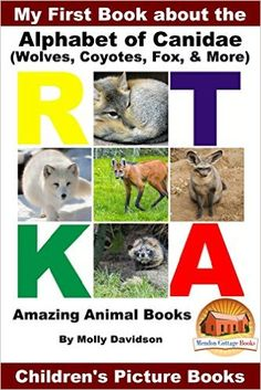 My First Book about the Alphabet of Canidae(Wolves, Coyotes, Fox, & More) - Amazing Animal Books - Children's Picture Books, Molly Davidson, John Davidson, Mendon Cottage Books - Amazon.com
