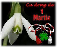 8 Martie, Button Art, Christmas Ornaments, Holiday Decor, Country, Spirituality, Birthday, Google, Diy