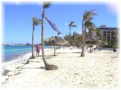 Google Image Result for http://www.the-bahamas-islands.com/cb-pi4.jpg