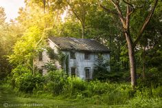 Fading Memory One Summer Morning, Old house in the Woods, Nature, Abandoned, Rural, Rustic, Wall Decor, Cottage Chic, Fine Art Print, signed on Etsy, $29.00