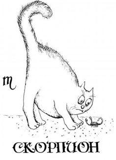 ESCORPION - Смешные знаки зодиака в виде котиков. На рисунки знак зодиака скорпион.