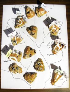 Game of Scones (by Sarah Schmidt Katie Salerno and Mandi Goodsett at the University of Illinois Edible Books Festival)
