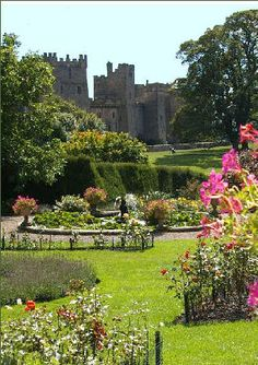 Raby Castle Gardens in County Durham Castle Gardens, History Of England, Durham, Holiday Ideas, Places To Visit, Plants, Paisajes, Planters, Plant